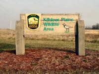 killdeer_plains_wildlife_area_harpster.jpg