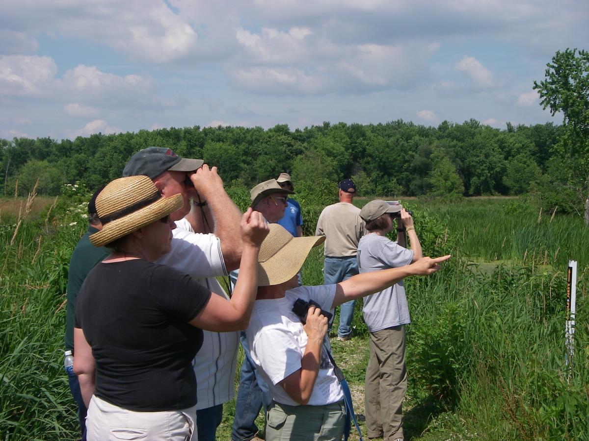 Field Observing