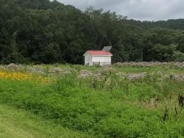 Wills Creek 5 acres of polinator field with Observation bee barn