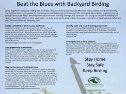 Beat the Blues with Backyard Birding